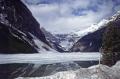 lake louise spring. wilderness natural history nature misc. british columbia alberta banff canada canadian national park