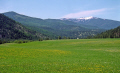 alpine meadowland montana usa. wilderness natural history nature misc. flathead lake bigfork glacier national park np rockies usa united states america american
