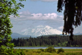 mount st helens information center near interstate washington state usa. volcanic volcanoes geology geological science misc. volcano np national park usa united states america american