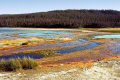 yellowstone national park overflow warm springs showing various colours algal activity differing levels acidity. wilderness natural history nature misc. algae ph lake np wyoming usa united states america american