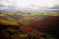 exmoor devon autumn. moorland countryside rural environmental uk fall colour color heather bracken devonian england english great britain united kingdom british
