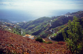 madeira view levada dos piornais. portuguese portugese european travel irrigation terrace terracing vines horizontal level water portugal island madiera europe