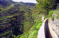 madeira walking levadas portuguese portugese european travel irrigation terrace terracing vines horizontal level water portugal island madiera europe