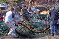 helping nets. passers-by passers by passersby fishermen dunbar east lothian scotland. working people persons fishing trawling trawler boat north sea harbour quayside seafood catch central scotland scottish scotch scots escocia schottland great britain united kingdom british