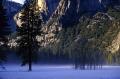 low lying mist snowy yosemite valley floor. california american yankee travel national park john muir np cascade cataract misty floor snow winter californian usa united states america