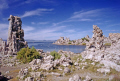 tufa formatations mono lake california. california american yankee travel lee vining bodie brine shrimp alkalii flies fly limestone calcium sodium carbonate sulphate sulfate californian usa united states america