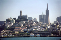 san francisco skyline. california american yankee travel sf bay area transamerica pyramid telegraph hill coit tower 345 centre pier 39 franciscan californian usa united states america