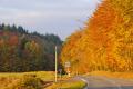 autumn colours near village corrèze limousin. trees wooden natural history nature misc. rural pastoral rolling hills correze monedieres fall limousin france la francia frankreich europe european french