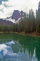 emerald lake wilderness natural history nature misc. british columbia kicking horse river louise burgess shale banff transparent rock flour turquoise canada canadian