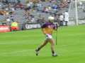 wexford hurler sport sporting celebrities celebrity fame famous star people persons dublin áth cliath republic ireland eire irish irland irlanda europe european