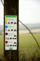 footpath sign southdowns way showing bridleway near petersfield signs abstracts misc. pathway south downs buriton hampshire hamps england english great britain united kingdom british