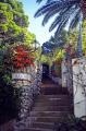 steps leading villa lidia near tiberius palace capri. southern italy italian european travel italia costiera amalfitana sorrento napoli naples walled garden ornamental capri italien italie europe