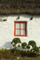 traditional manx thatched cottage window houses british housing homes dwellings abode architecture architectural buildings uk red whitewashed straw thatching plants isle man england english great britain united kingdom