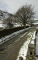 stone wall lane trees snow fells glenridding lake district british lakes countryside rural environmental uk winter road hills snowy bare cumbria cumbrian england english great britain united kingdom