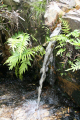 waterfall taken garden route south africa waterfalls cascade cataracts geology geological science misc. water afrikaans african