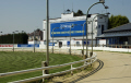 greyhound stadium track romford statium sports sporting uk dog racing fast betting trackside rails essex england english great britain united kingdom british