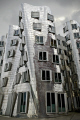 gehry building dusseldorf germany unusaul contemporary architechture chrome finish strabge angles. german deutschland european travel architectural architecture converging verticles diverging frank grey modern moody shining shiny sky strange unusual verticals weird rhineland rhine valley europe germanic