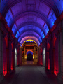 glasgow city chamber christmas.scotland christmas scotland christmasscotland uk town halls government buildings british architecture architectural changing lights chambers christmas central scotland scottish scotch scots escocia schottland great britain united kingdom