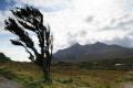 black cullins skye.scotland skye scotland skyescotland mountains countryside rural environmental uk isle skye eilean sgitheanach highlands islands scotland scottish scotch scots escocia schottland great britain united kingdom british
