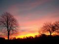 sunrise paisley. scotland sky natural history nature misc. paisley renfrewshire scottish scotch scots escocia schottland great britain united kingdom british
