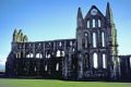 whitby abbey uk abbeys churches worship religion christian british architecture architectural buildings old town yorkshire st mary church sainte hilda captain james cook england english great britain united kingdom