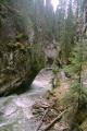 johnston canyon banff national park canada wilderness natural history nature misc. river waterfall cascade np alberta canadian