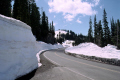 chinook pass mt rainier washington state usa. snow natural history nature misc. volcano volcanic vulcanism shield cascades mountain drift usa united states america american