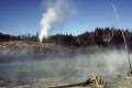 mud volcano area yellowstone national park wyoming. volcanic volcanoes geology geological science misc. caldera crater magma vulcanism hydrothermal hot springs np geothermal wyoming usa united states america american