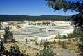 norris geyser basin yellowstone national park usa. volcanic volcanoes geology geological science misc. hydrothermal hot springs caldera crater magma vulcanism wyoming usa united states america american