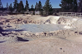 fountain paint pots yellowstone national park usa. volcanic volcanoes geology geological science misc. hydrothermal hot springs caldera crater magma vulcanism wyoming usa united states america american