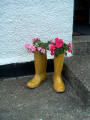flowers wellies misc. boots glasgow central scotland scottish scotch scots escocia schottland great britain united kingdom british