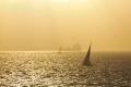 yachts shipping solent uk boats marine misc. yacht sea sunset isle wight england english great britain united kingdom british