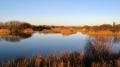 dungeness winter uk. england english uk pool warm light landscape great britain united kingdom british