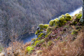 moss covered rocks overlooking dordogne valley belvedere gratte-bruyere gratte bruyere grattebruyere near nuevic france french landscapes european travel limousin correze river glacial trees verdant wild saranden sumene la francia frankreich europe