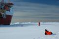 british antarctic survey royal research ship ernest shackleton brunt iceshelf polar natural history nature misc. shipping antarctica united kingdom