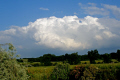 thunderclouds developing norfolk. clouds sky natural history nature misc. dramatic storm meteorology thunder-cloud thunder cloud thundercloud cell lightning cloud-burst cloud burst cloudburst rain downpour cumulo-nimbus cumulo nimbus cumulonimbus cunim weather east anglia norfolk england english great britain united kingdom british