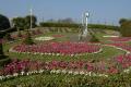 ornamental gardens hoe park uk parks environmental plymouth devon devonian england english great britain united kingdom british