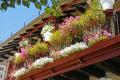 floral balcony quai lestourgie pleasant market town argentat southern limousin. french buildings european travel correze dordogne promenade quay quais bridge limousin france la francia frankreich europe