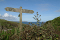 coastal path uk coastline environmental walking lizard cornwall cornish england english angleterre inghilterra inglaterra united kingdom british