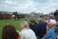crowds jousting tournament historical britain history science joust falmouth cornwall cornish england english angleterre inghilterra inglaterra united kingdom british