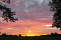 beautiful sunset dunham massey sunsets sky natural history nature misc. cheshire england english angleterre inghilterra inglaterra great britain united kingdom british uk grande-bretagne grande bretagne grandebretagne großbritannien gran bretagna bretaña