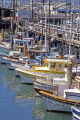 fishing boats fisherman warf san francisco taken tarantino restaurant. california american yankee travel bay area waterfront marina californian usa united states america