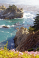 coastline julia pfeiffer burns state park big sur california american yankee travel cabrillo highway pacific coast pch little californian usa united states america