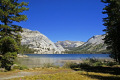 tioga lake yosemite national park. wilderness natural history nature misc. california sierra nevadas mountains alpine pristine turquoise np californian usa united states america american