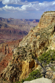 grand canyon arizona taken south rim american yankee travel colorado usa river geology strata national park np united states america