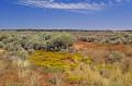 prairie near kaneb utah wilderness natural history nature misc. sagebrush usa united states america american