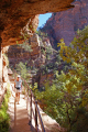 zion national park walking canyon overlook trail. rock formations geology geological science misc. hiking navajo sandstone cliffs exposure np scenic byway highway jurassic utah usa united states america american