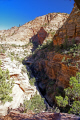 zion national park pine canyon taken overlook trail. wilderness natural history nature misc. navajo sandstone geology cliffs exposure np scenic byway highway jurassic utah usa united states america american
