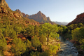 zion national park virgin river. wilderness natural history nature misc. navajo sandstone geology cliffs exposure np scenic byway highway jurassic utah usa united states america american
