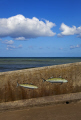 fish painted sea wall sheringham norfolk seafront uk coastline coastal environmental seaside art promenade england english angleterre inghilterra inglaterra great britain united kingdom british grande-bretagne grande bretagne grandebretagne großbritannien gran bretagna bretaña